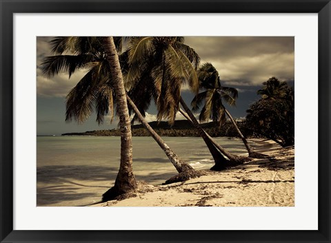 Framed Playa Rincon beach, Las Galeras, Samana Peninsula, Dominican Republic Print