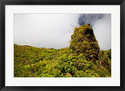Framed Rim of Summit Crater on Mt Pelee, Martinique, French Antilles Print