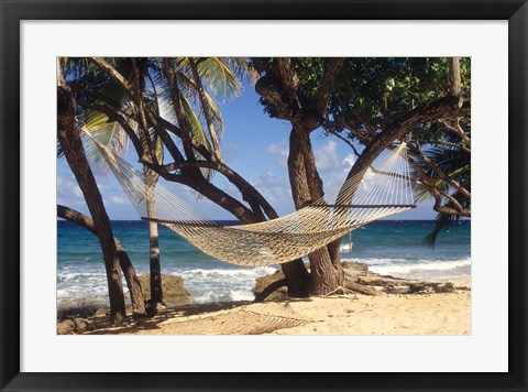 Framed Hammock tied between trees, North Shore beach, St Croix, US Virgin Islands Print