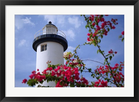Framed Puerto Rico, Viegues Island, lighthouse of Rincon Print