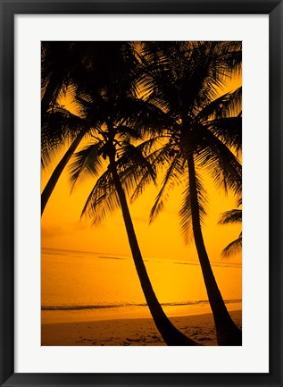 Framed Sunset and Palms, San Juan, Puerto Rico Print