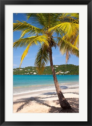 Framed Megan's Bay beach, St Thomas, US Virgin Islands Print