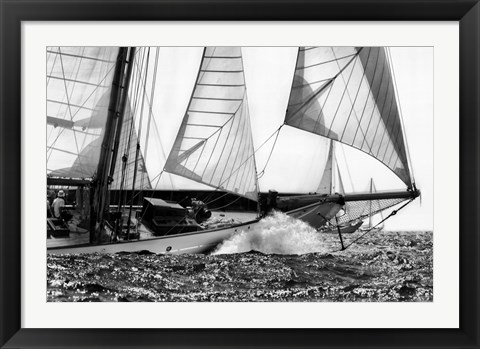 Framed Free Sailing Print