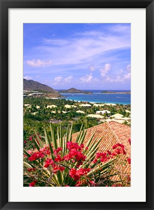 Framed Orient Bay and pink flowers, St Martin, Caribbean Print