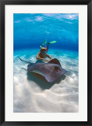 Framed Stingray City, Grand Cayman, Cayman Islands, Caribbean Print