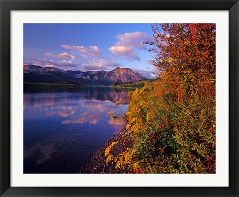 Framed Maskinonge Lake with mountains in the background, Waterton Lakes National Park, Alberta Print