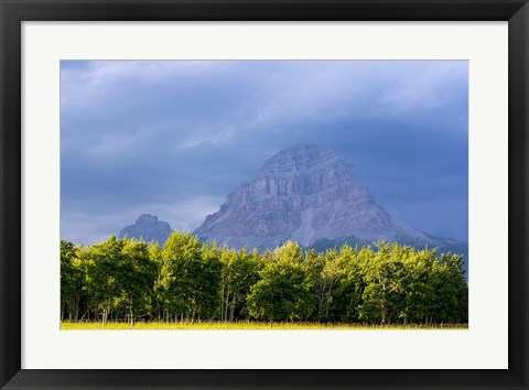 Framed Crowsnest Mountain at Crownest Pass in Alberta, Canada Print