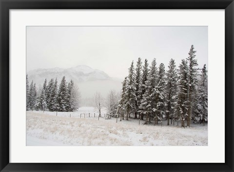 Framed Winter Views from Train, Alberta, Canada Print