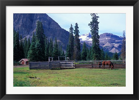 Framed Log Cabin, Horse and Corral, Banff National Park, Alberta, Canada Print