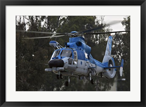 Framed AS-565 Atalef of the Israeli Air Force Print