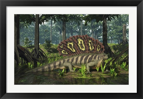 Framed Edaphosaurus forages in a brackish mangrove like swamp Print