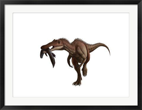 Framed Baryonyx dinosaur with a fish in mouth, white background Print