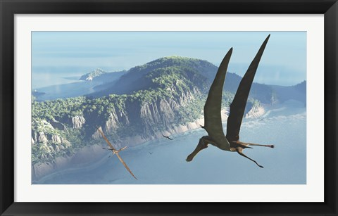Framed Species from the genus Anhanguera soar 105 million years ago over what is today Brazil Print