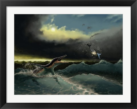Framed Pliosaurus irgisensis attacking a shark Print