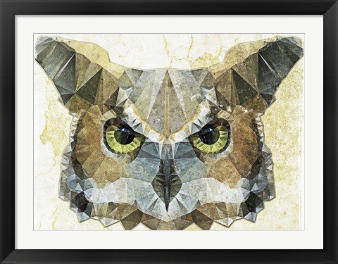 Framed Abstract Owl Print