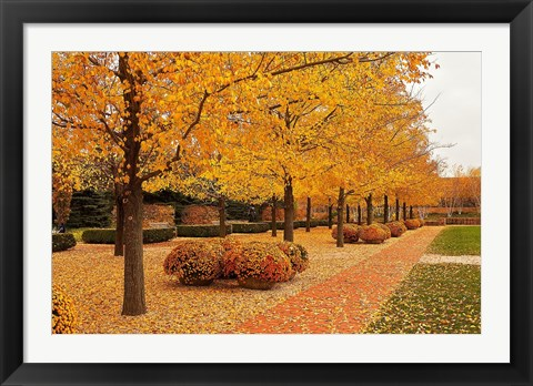Framed Fall Walkway Print