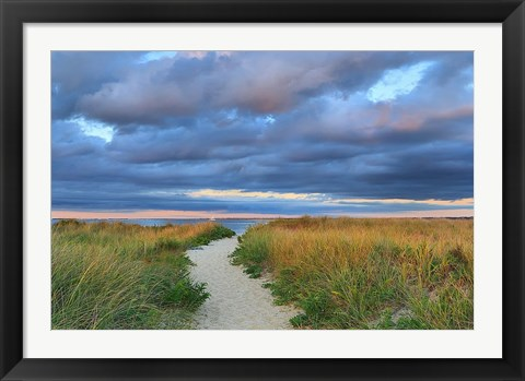 Framed Jetties Beach Path Print