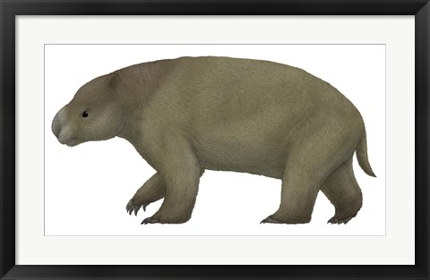 Framed Diprotodon, the Largest know Marsupial Print