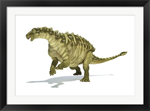 Framed Talarurus Dinosaur on White background Print