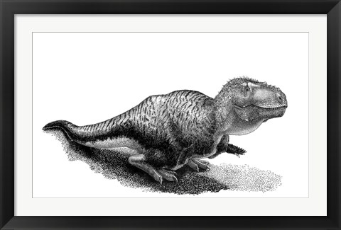 Framed Black Ink Drawing of Tarbosaurus Bataar Print