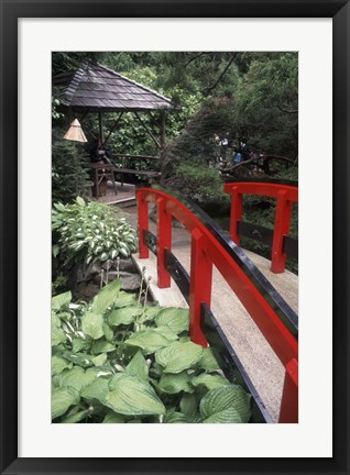 Framed Japanese Garden at Butchart Gardens, Vancouver Island, British Columbia, Canada Print
