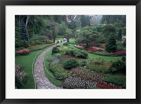 Framed Butchart Gardens, Vancouver Island, British Columbia, Canada Print