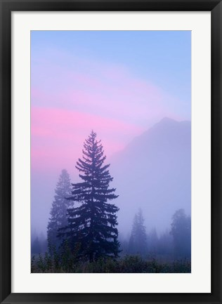 Framed Canada, British Columbia, Mount Robson Park Foggy sunrise Print