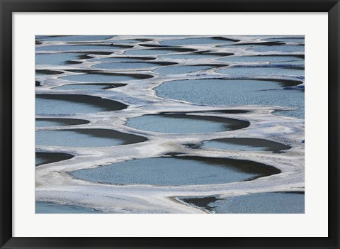 Framed Spotted Lake, Osoyoos, British Columbia, Canada Print