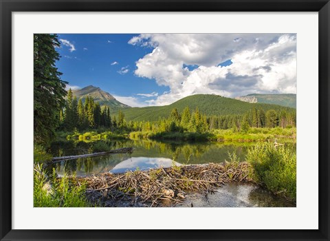 Framed Flathead River, British Columbia, Canada Print