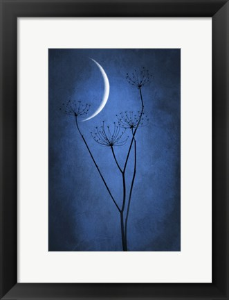 Framed Blue Crescent Moon Print