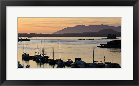 Framed Sunset at Tofino, Harbor, Vancouver Island, British Columbia Print