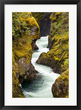 Framed River, Vancouver Island, British Columbia Print