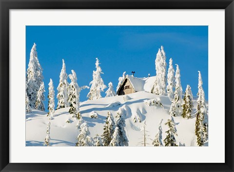 Framed Mountain cabin, Seymour Mountain, British Columbia Print