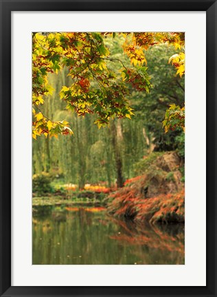 Framed Colorful Fall Leaves at Butchart Gardens, Victoria, British Columbia, Canada Print