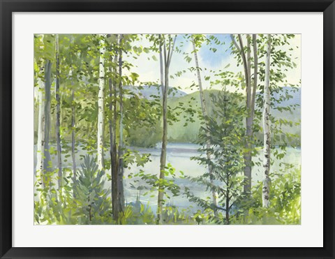 Framed Summer Lake IV Print
