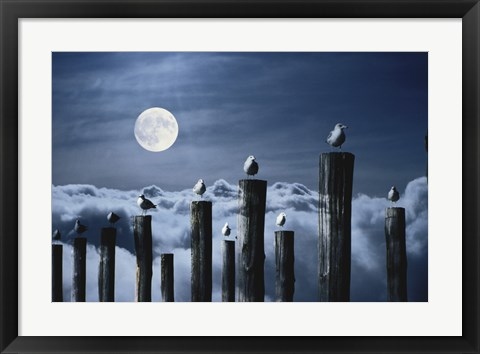 Framed Seagulls Perched on Wooden Posts under a Full Moon Print