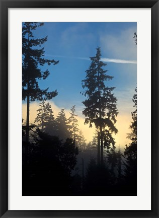 Framed Stanley Park, Vancouver, British Columbia, Canada Print