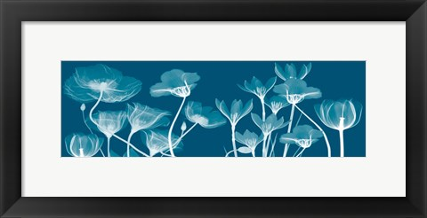 Framed Transparent Flora B Print