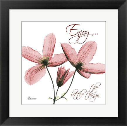 Framed Journey Clematis Print