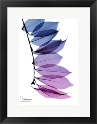 Framed Camelia Leaf In Purple Print