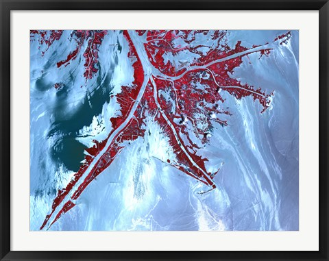 Framed False Color Satellite View of the Very tip of the Mississippi River Delta Print