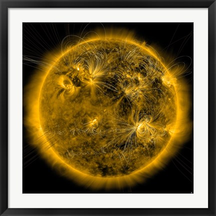 Framed Magnetic Field lines on the Sun Print