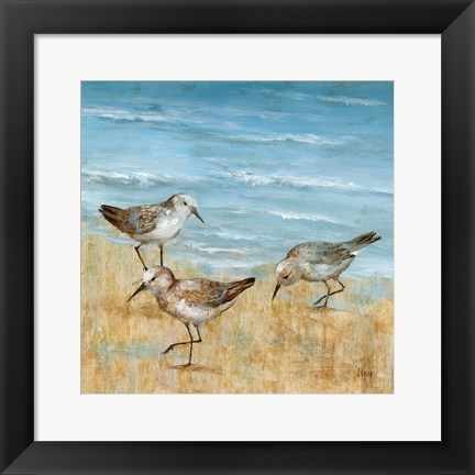 Framed Sandpipers II Print