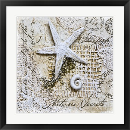 Framed Nature's Secrets - Starfish Print