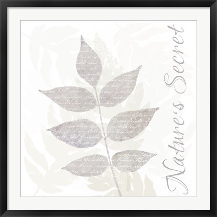 Framed Nature Set Leaves Print