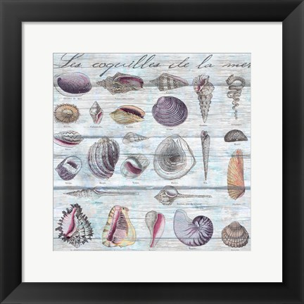 Framed Les Coquilles Pattern Wood Print