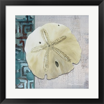 Framed Sand Dollar 1 - Side Border And Turquoise Crackle Back Print