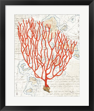 Framed Textured Coral IV Print