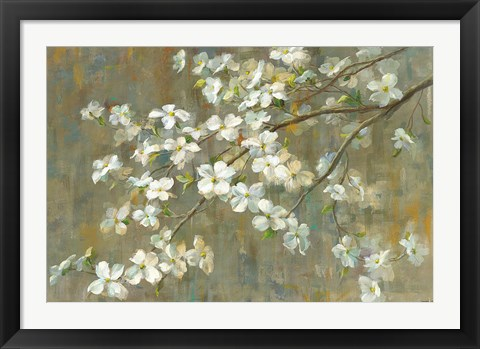 Framed Dogwood in Spring Print