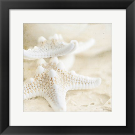 Framed Seashore Stars Print